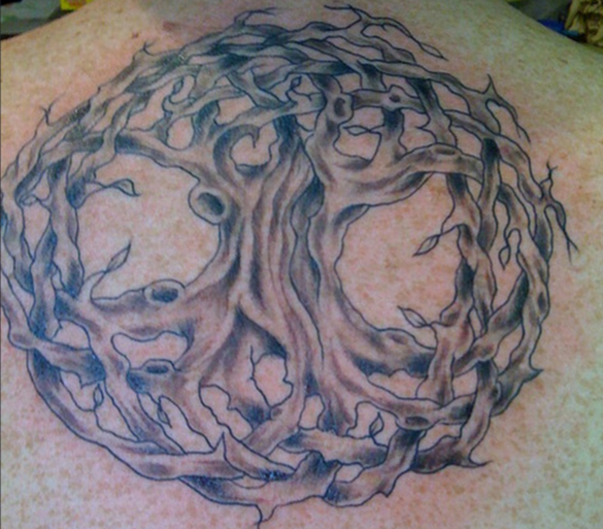A Celtic tree of life tattoo.