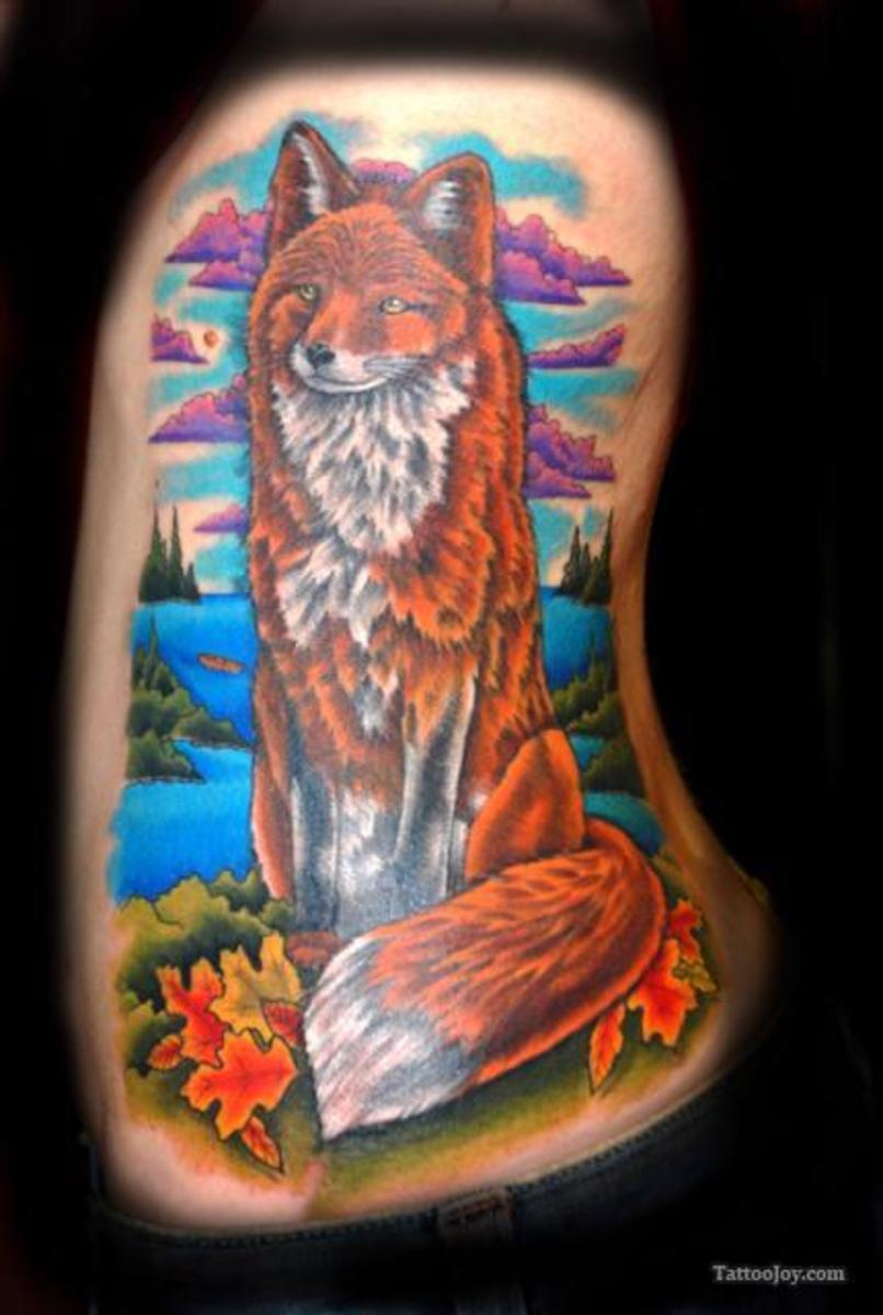 An orange fox.