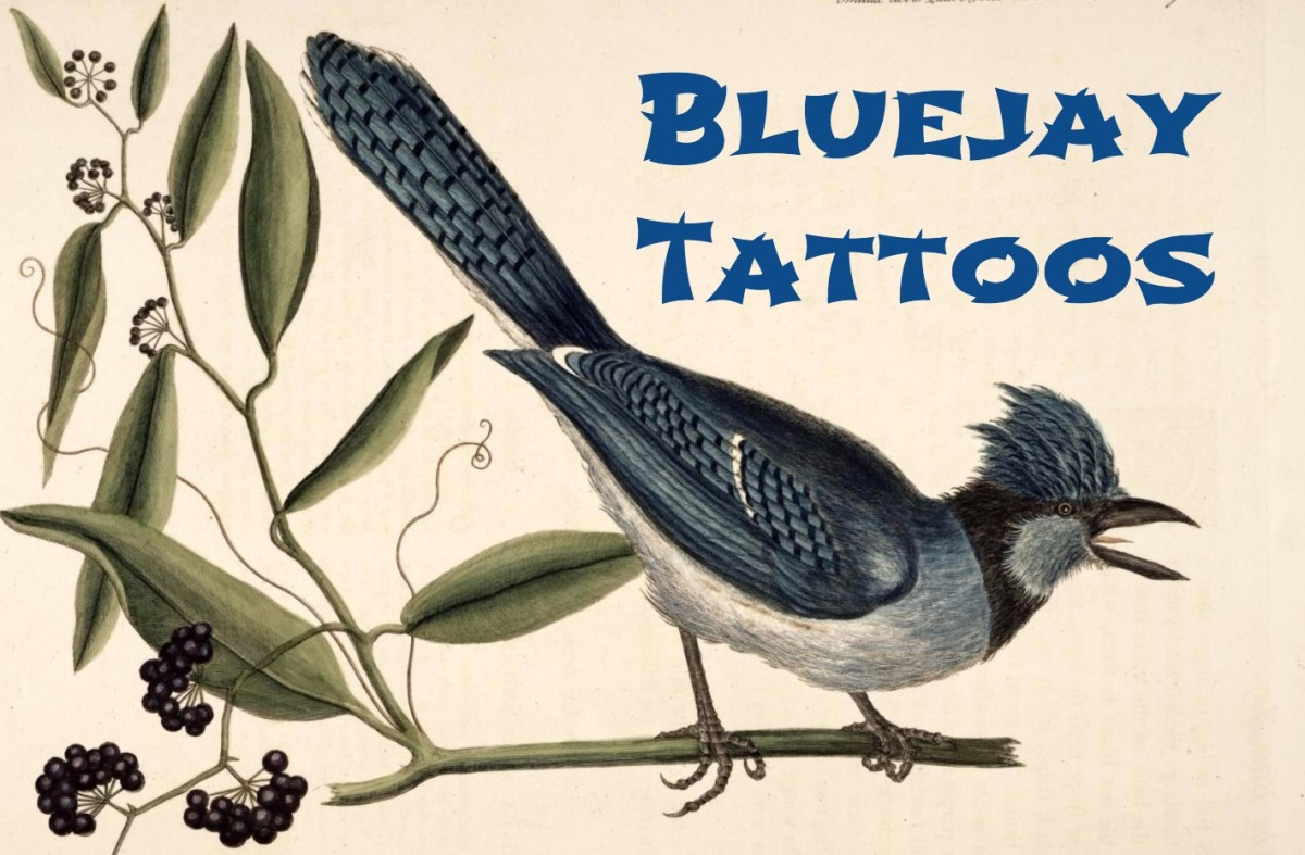 Blue Jay Tattoo Meanings & Designs