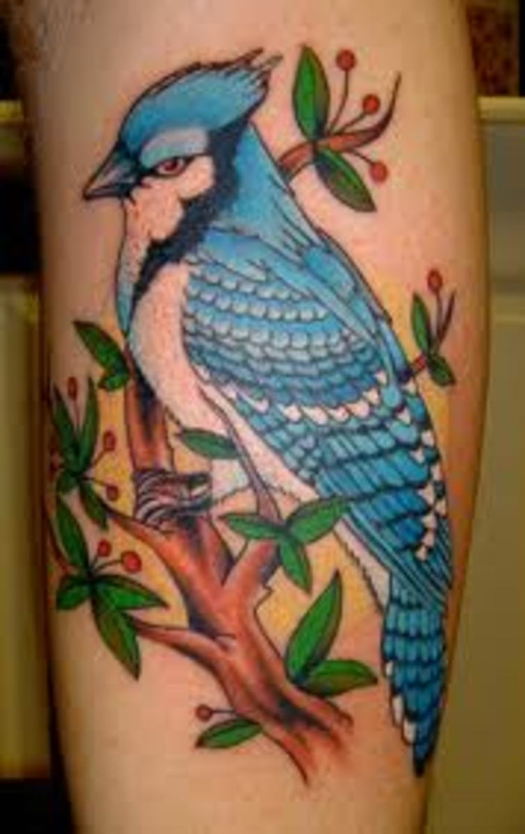 blue jay tattoo meanings designs tatring. Black Bedroom Furniture Sets. Home Design Ideas