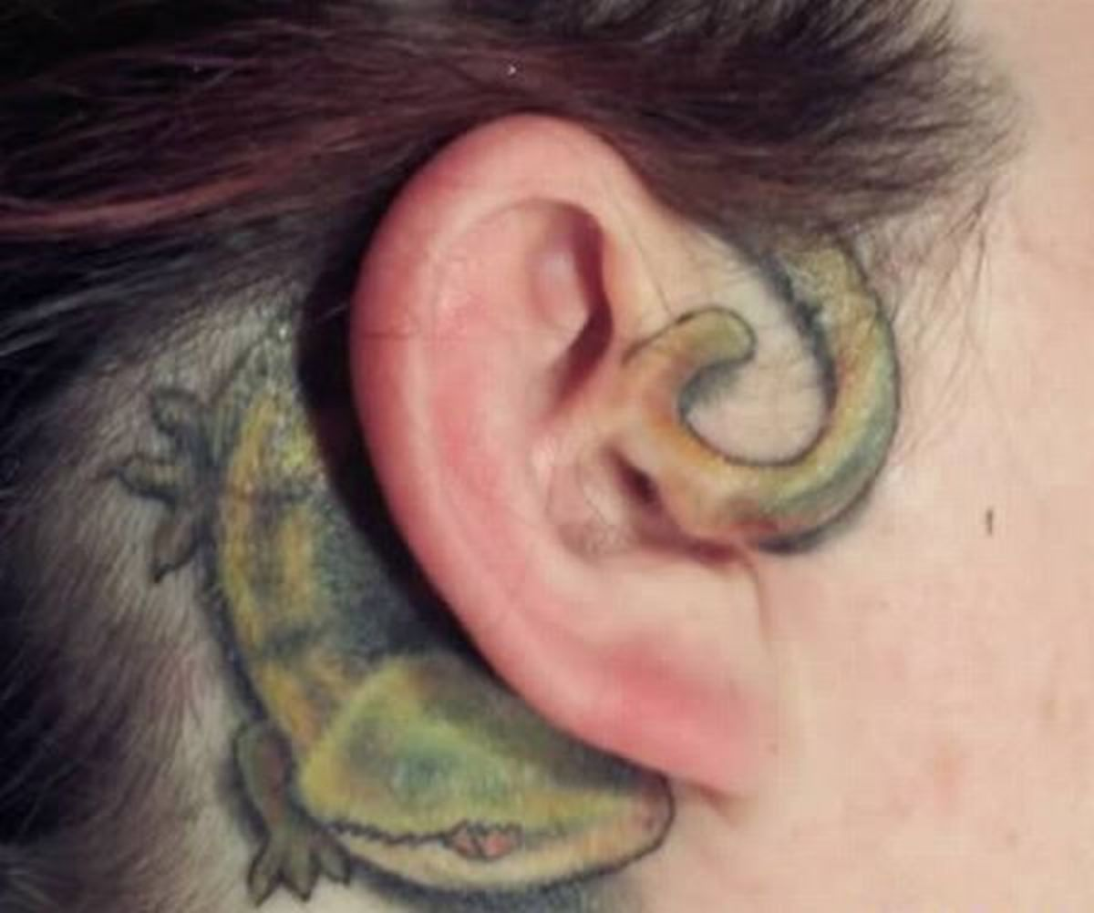Green lizard wrapping behind the back of ear