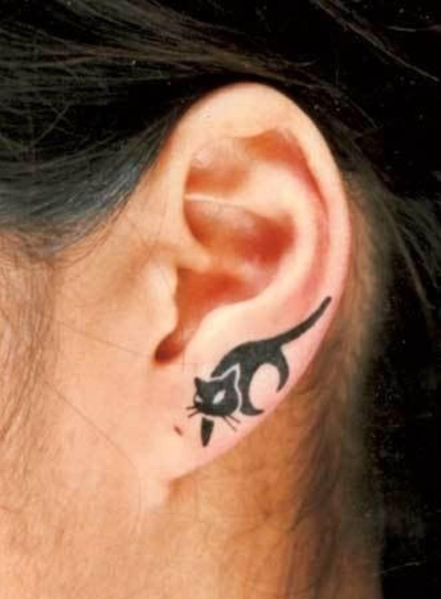 Little cat slinking along the ear lobe