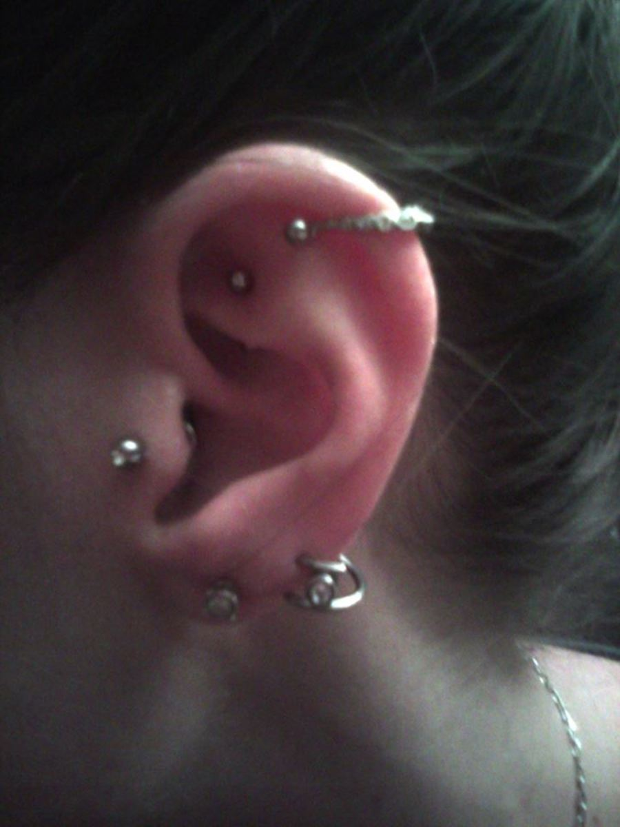 My left ear; two lobes, tragus, rook, and helix/rim.