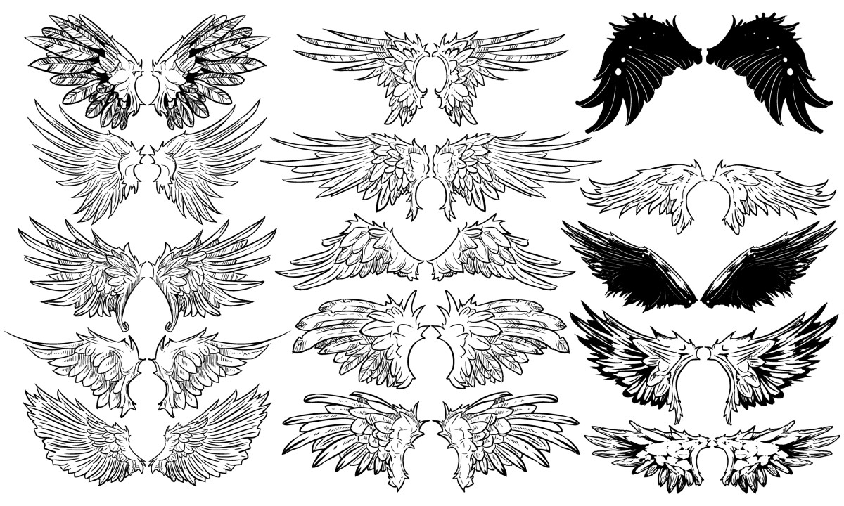 Wing flash art.