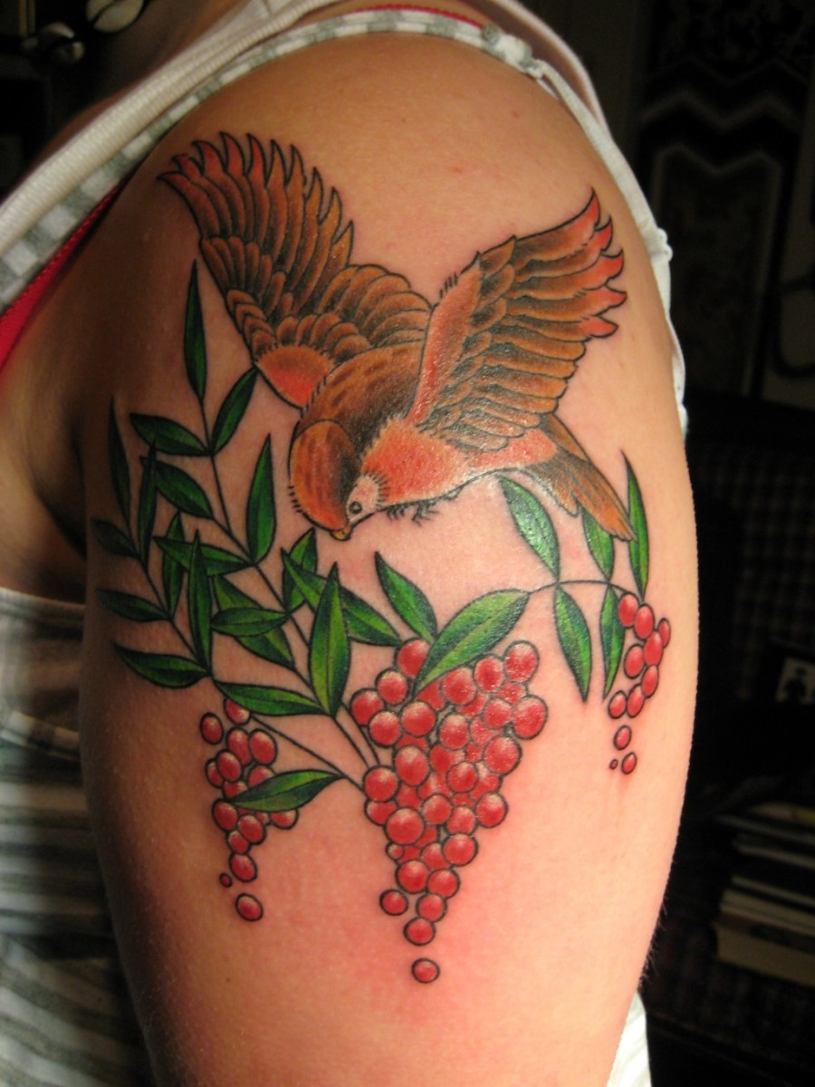 A vibrant tattoo of a bird hovering over red berries.