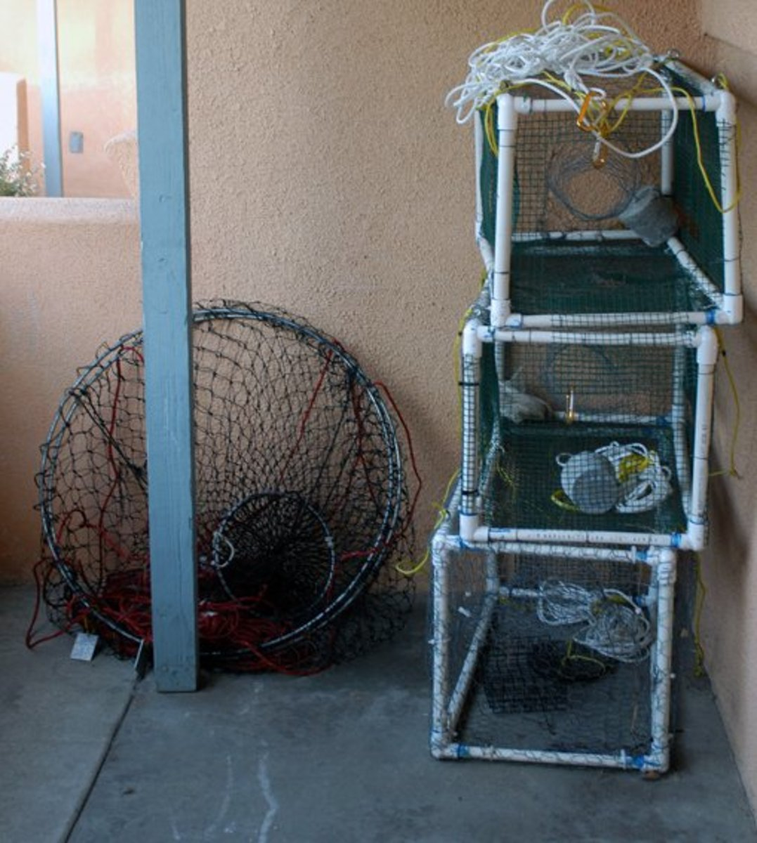 How to build a blue crab trap