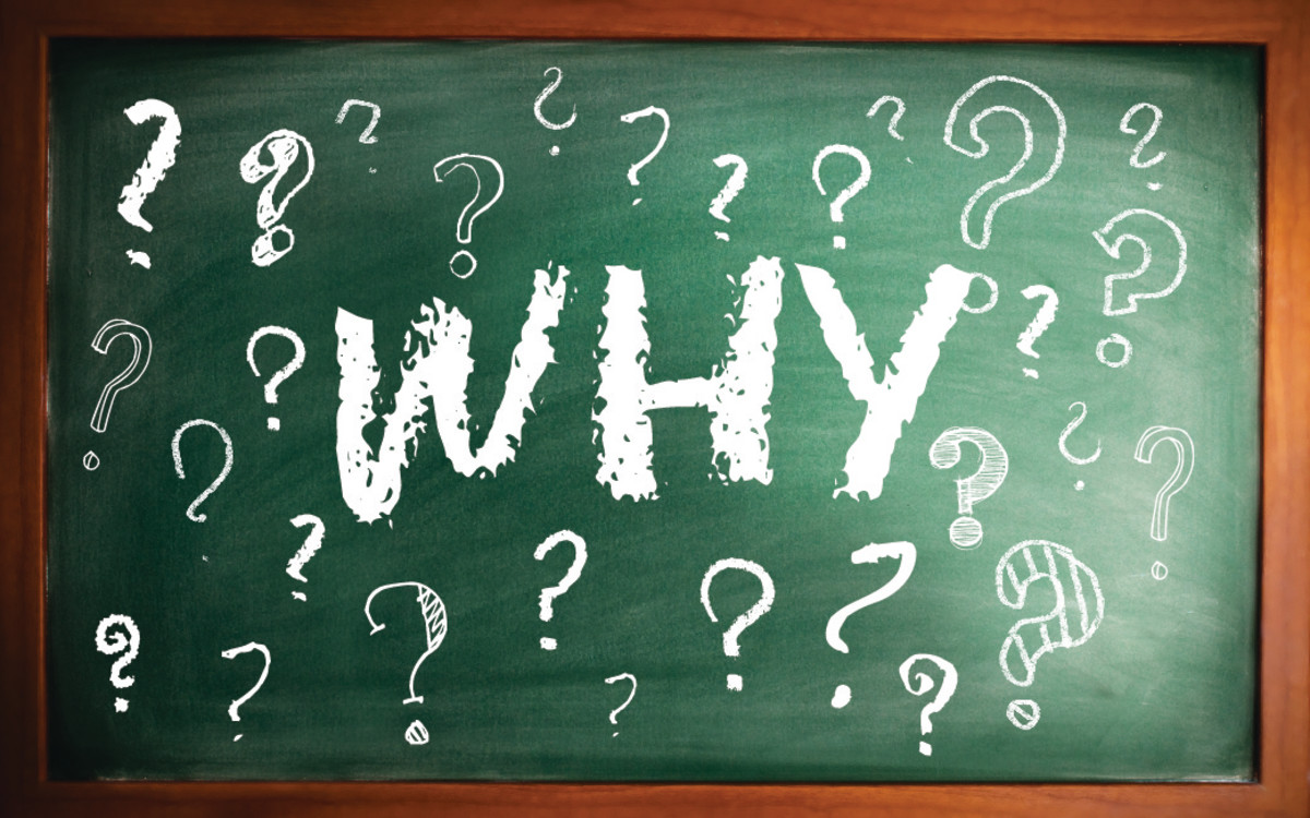 """A causal essay tells """"why"""" something is the way it is."""