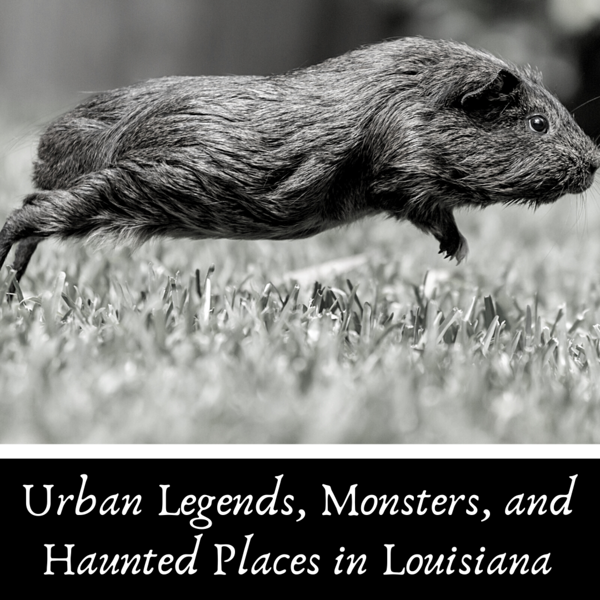 Louisiana Urban Legends, Monsters, and Haunted Places