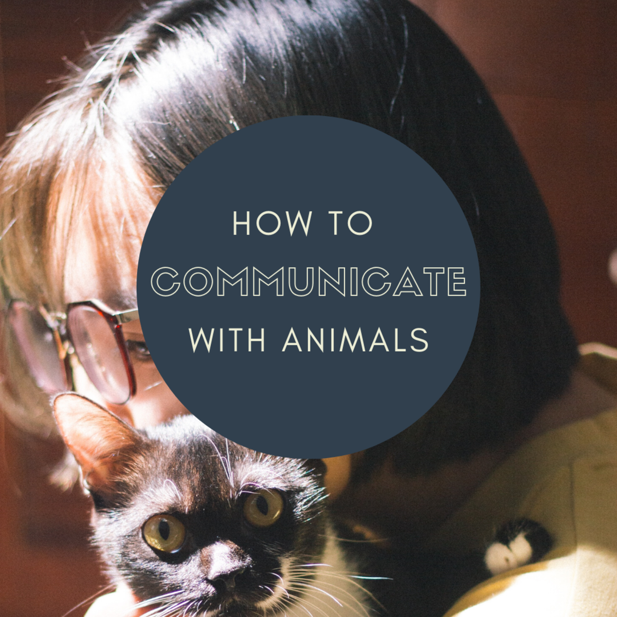 How to Talk to Animals: Psychic Connections and Telepathy