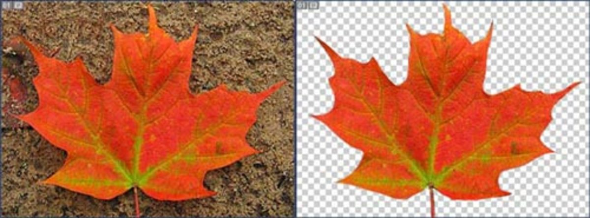 Photoshop Tutorial: How to use Photoshop to Deep-Etch an image
