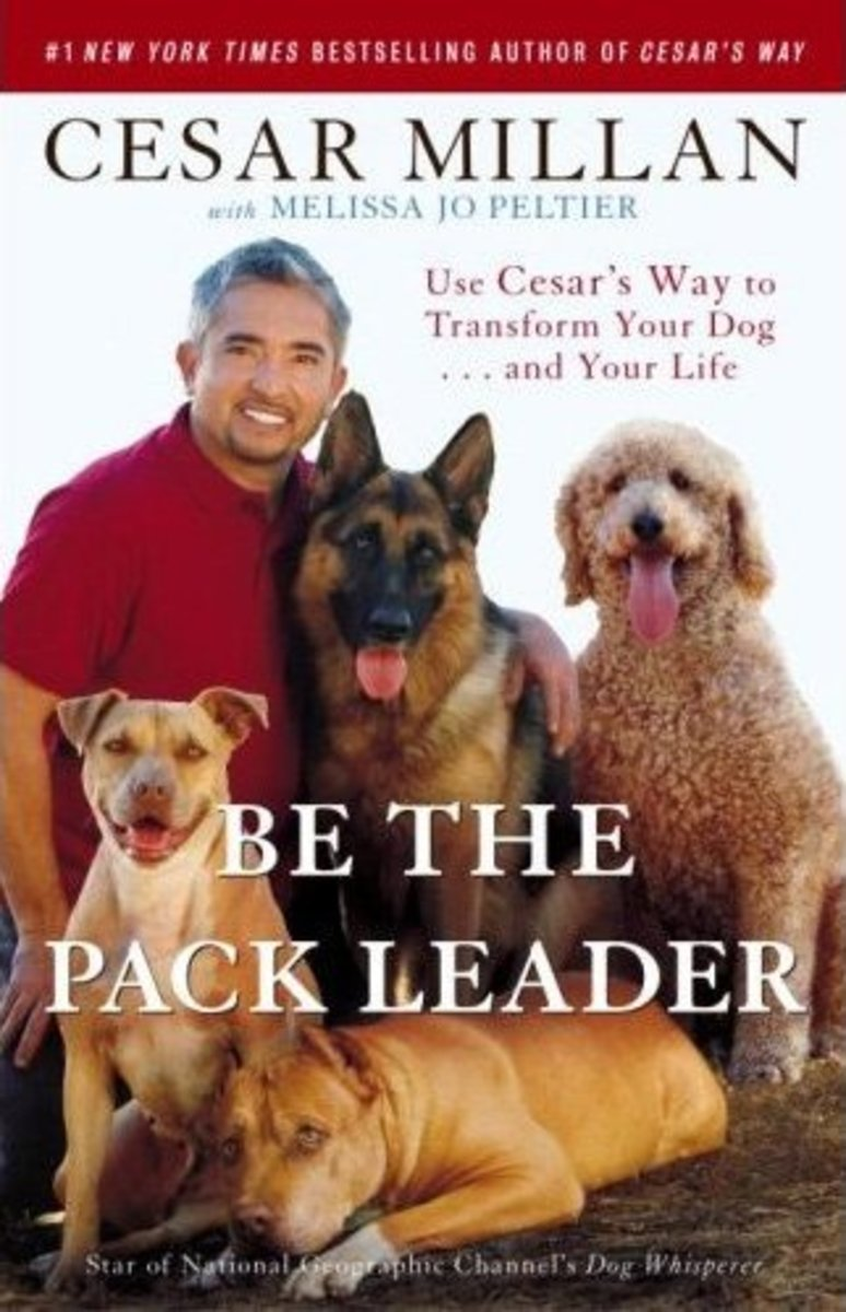 Be the Pack Leader: Use Cesar's Way to Transform Your Dog . . . and Your Life. From Amazon.com