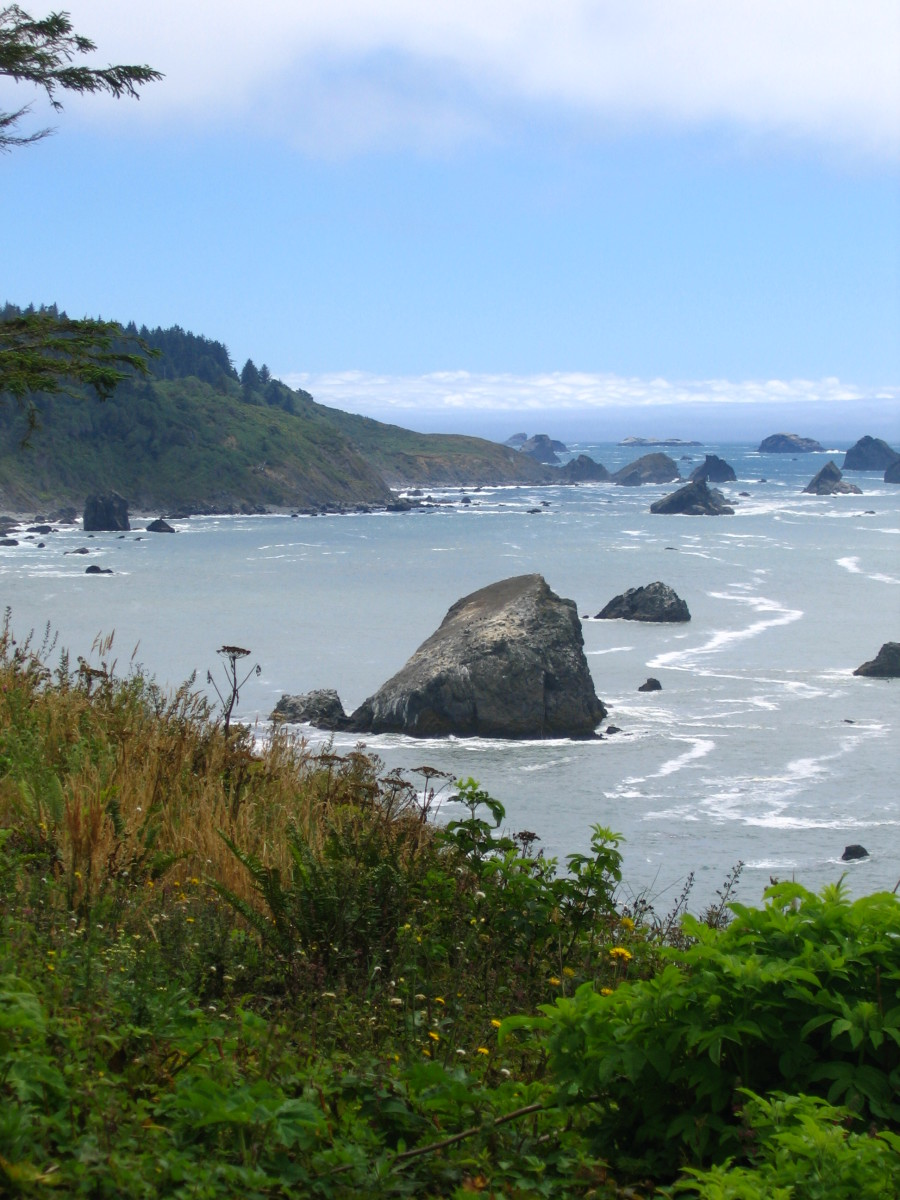 Best Northern California Beach Campgrounds: Patrick's Point State Park Review