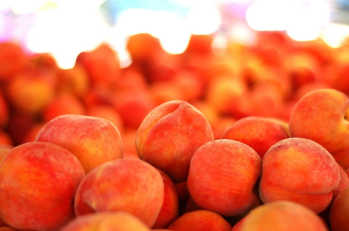 World's Best Peach Cobbler Crust Recipe