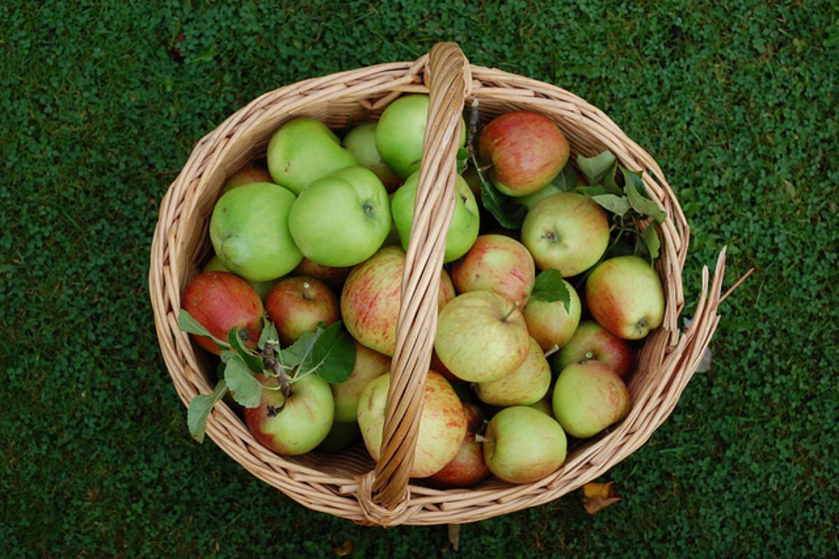 4 Harvest Recipes for Celebrating Mabon