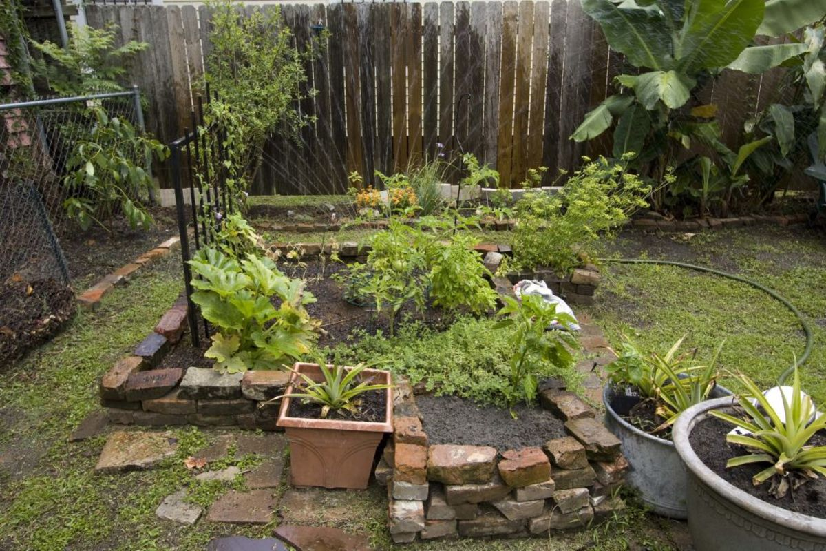 Even a small garden can be very beneficial.