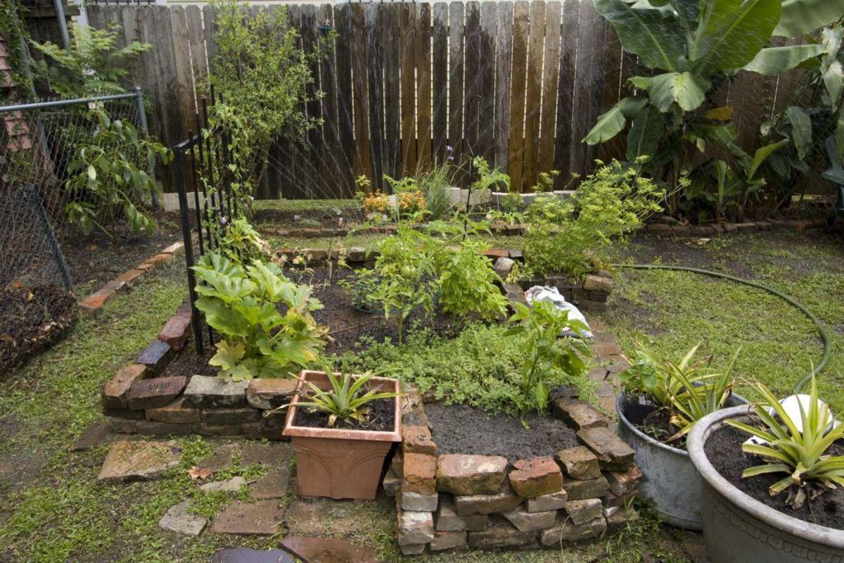 Even a small garden can be very beneficial.