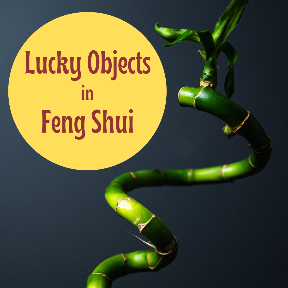 Feng Shui: Lucky Objects and Where to Put Them to Bring Luck