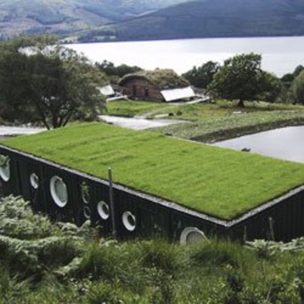 Sustainable green living roofs