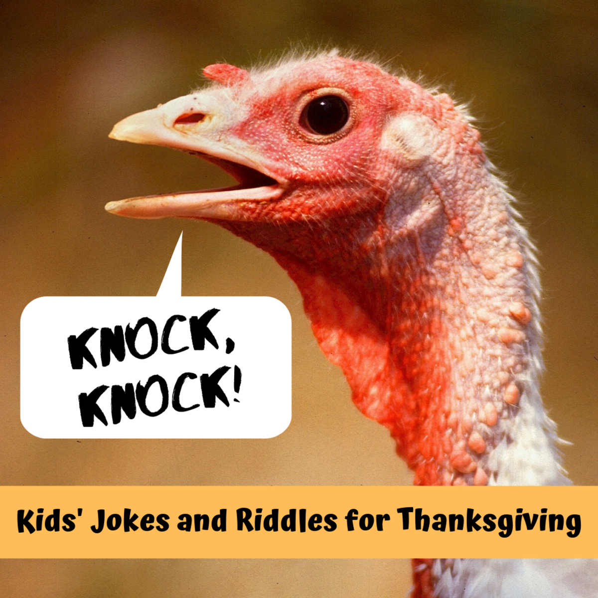Thanksgiving Knock-Knock Jokes and Riddles for Kids