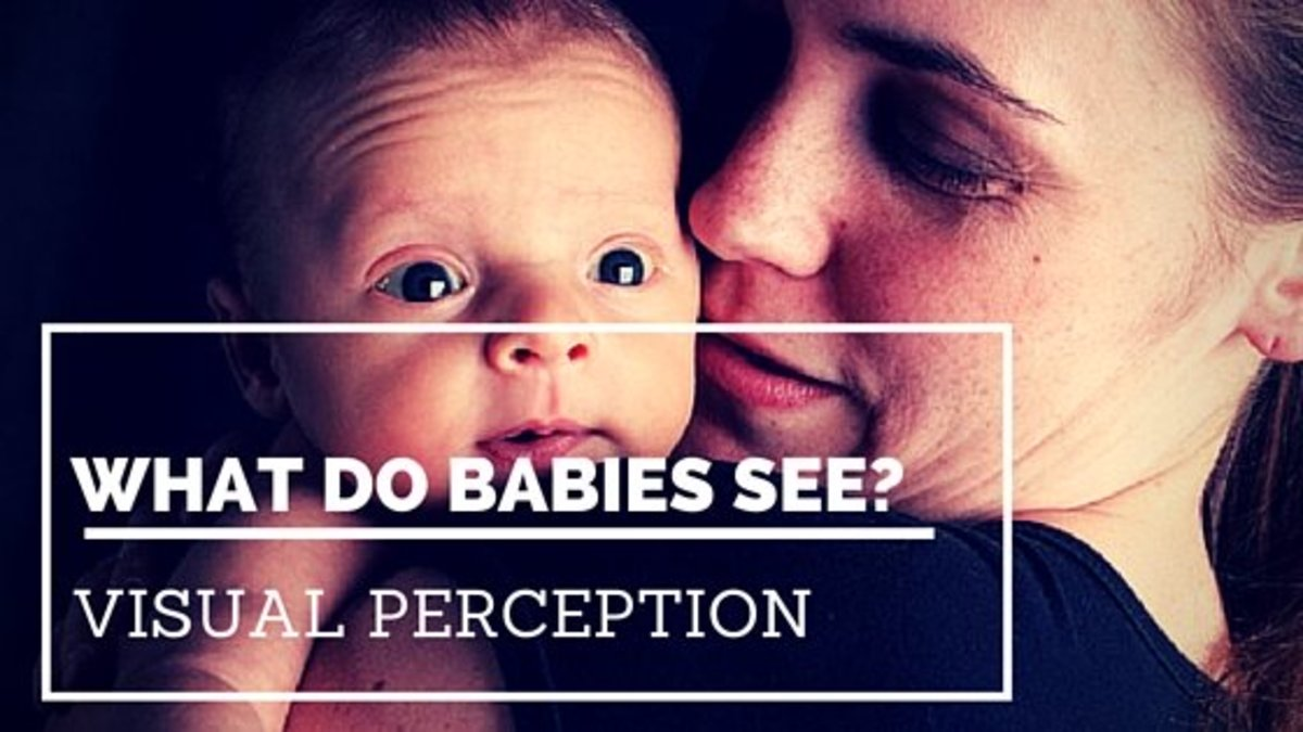 Visual Perception and Babies: What Do Babies See? | Owlcation
