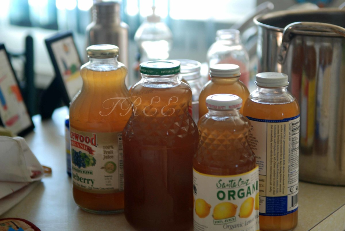It's Alive!!! The Truth about Kombucha
