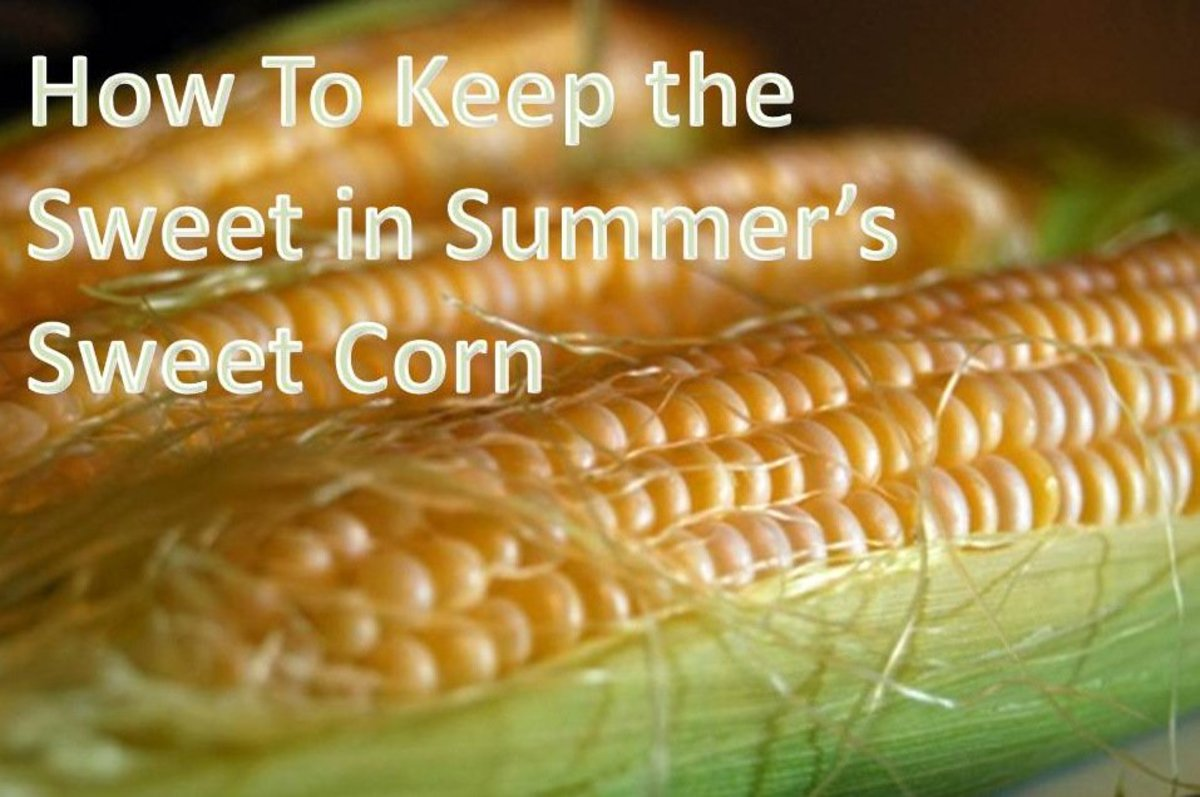 How To Keep the Sugar in Summer's Fresh Sweet Corn