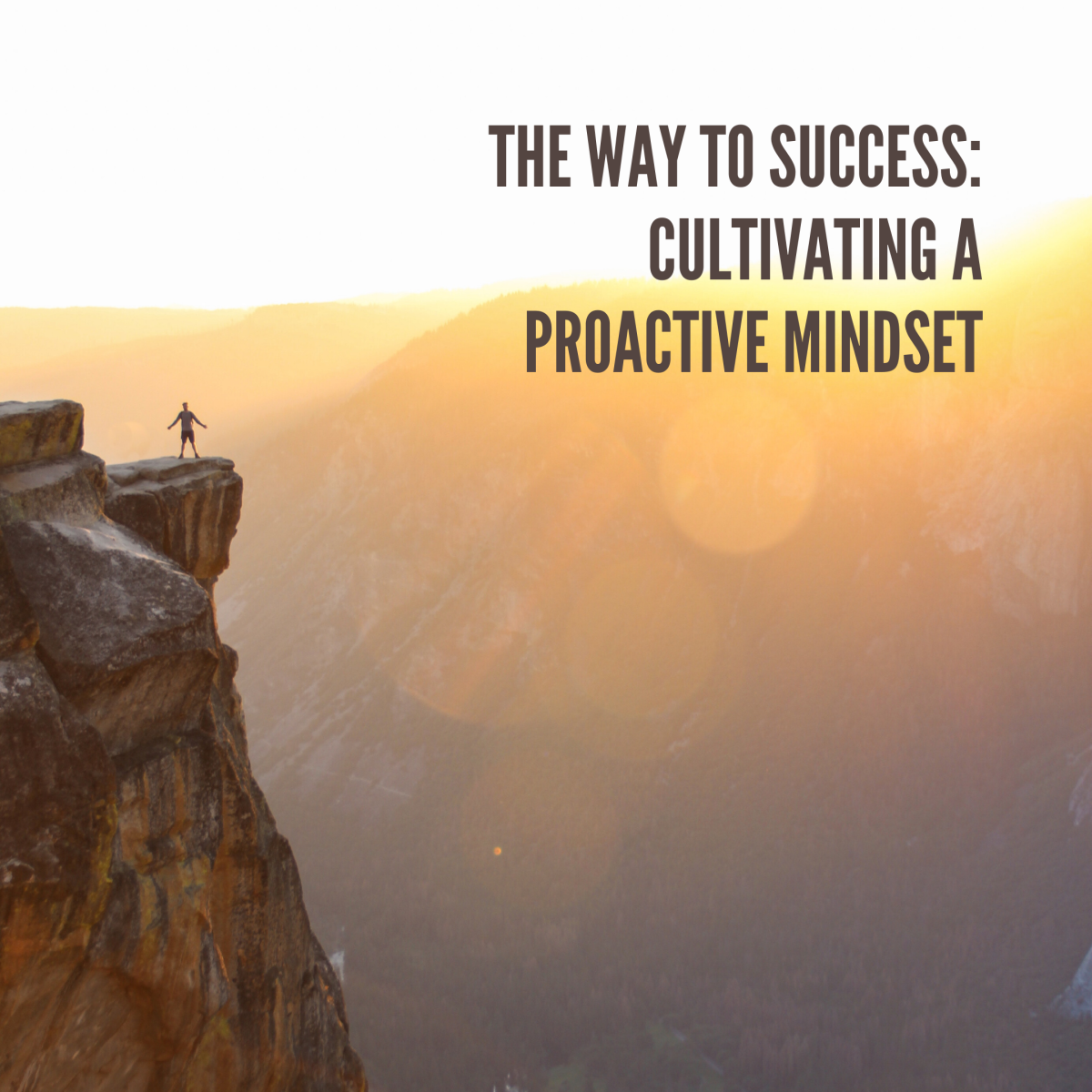 Cultivating the Success Mindset