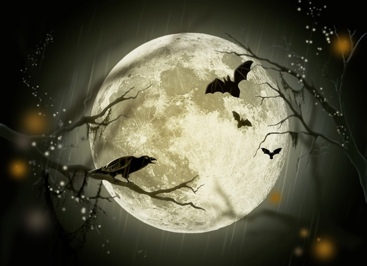 Happy Samhain! The Wiccan Sabbat.