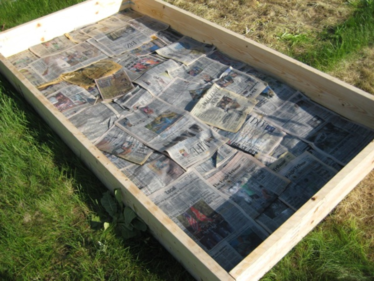 The start of a new bed, framed with 2X8 inch wood sides.