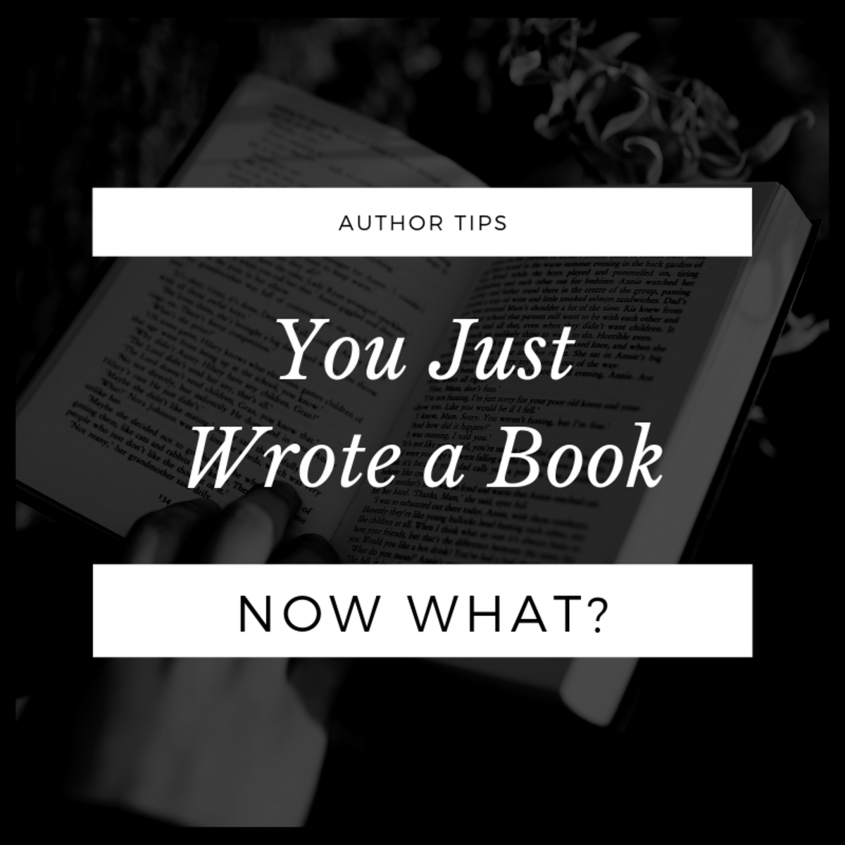 You Just Wrote a Book. Now What?