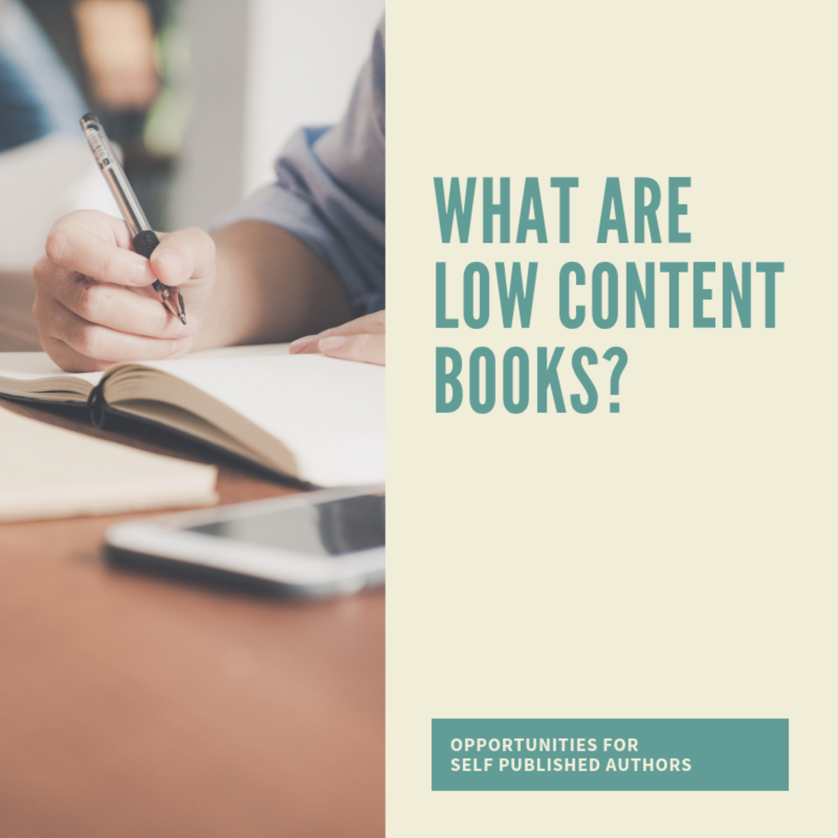 What Are Low Content Books?