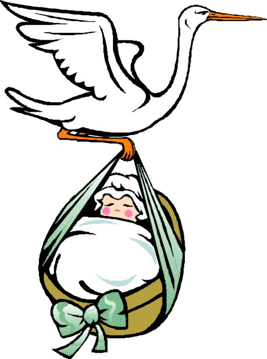 You can blame the English for the baby-carrying stork. In the Middle Ages they noticed their storks left on a migratory journey for nine months out of the year. Did they bring back human babies on their return? Well, only you can decide on that one!