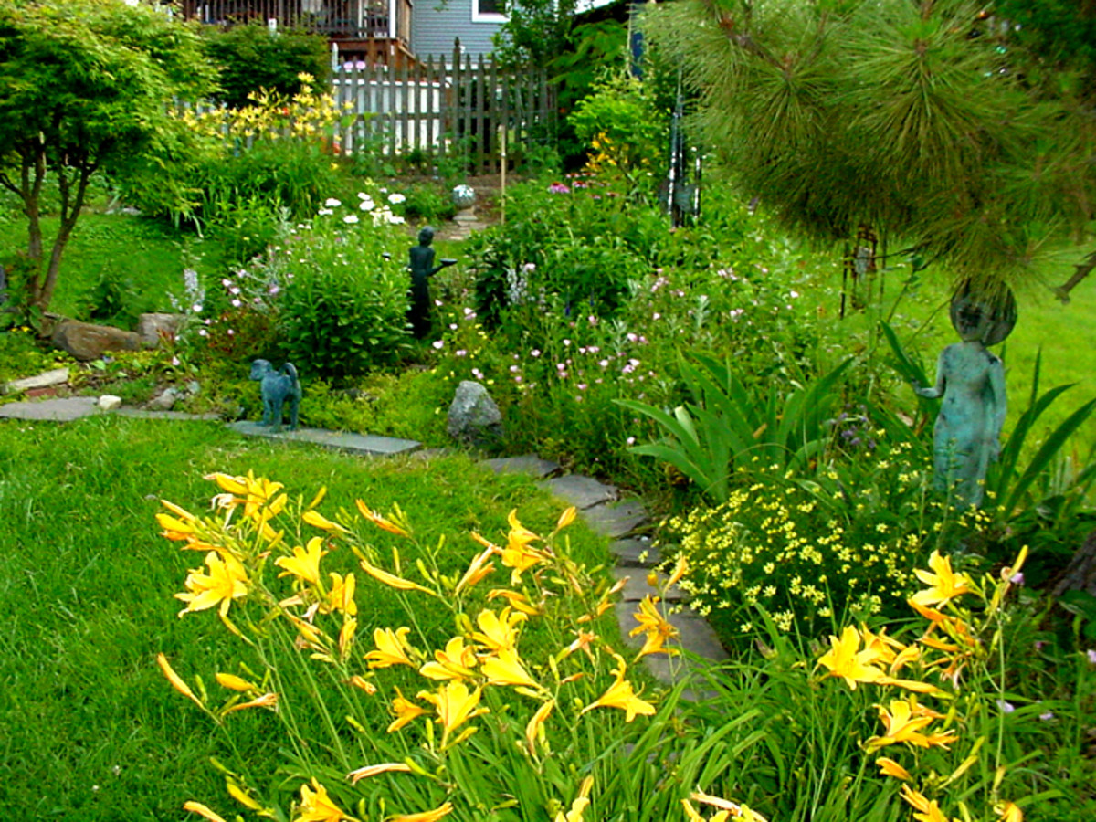 The Frugal Flower Garden: Building A Beautiful Garden For Almost