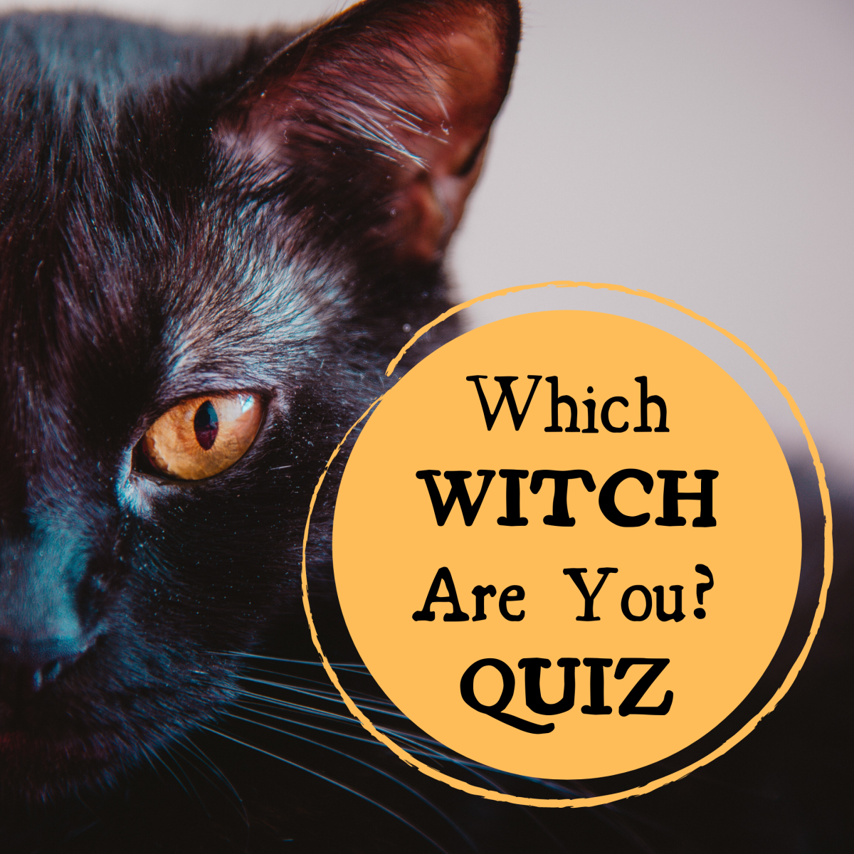 Which TV or movie witch are you? Take the quiz and find out here!