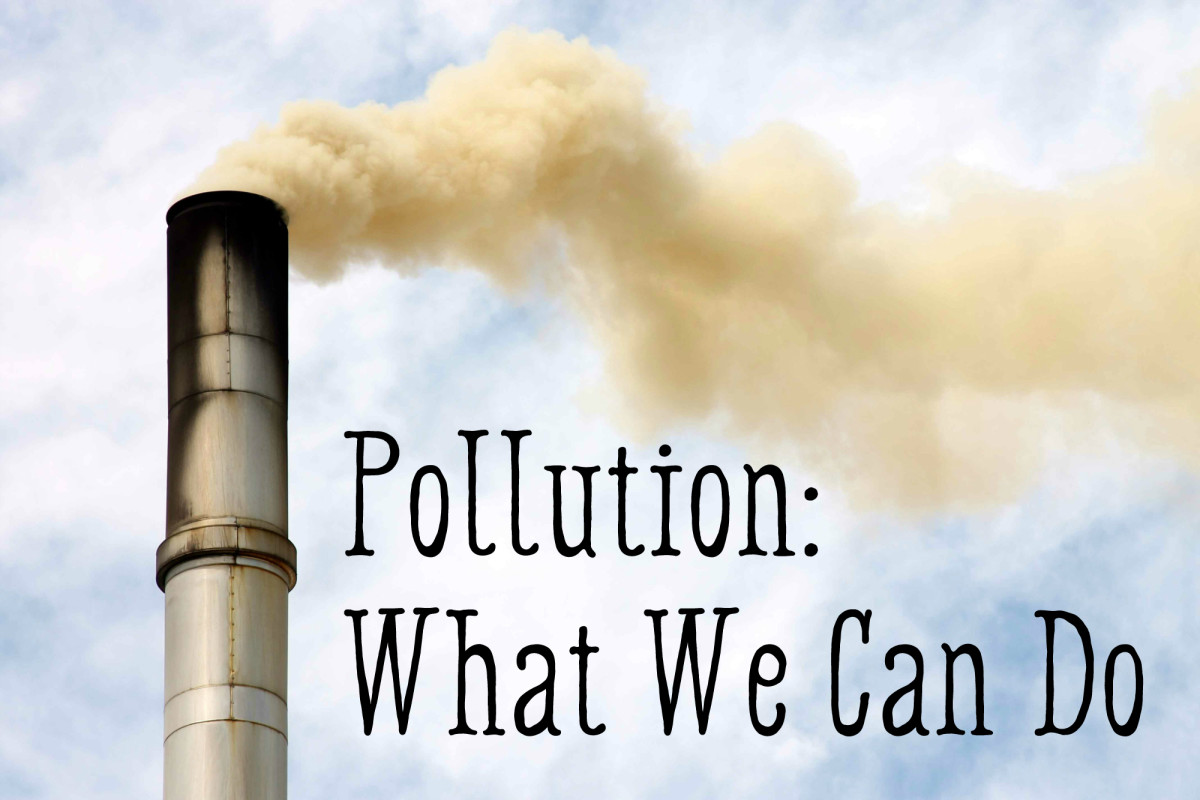 Pollution: What Can I Do?