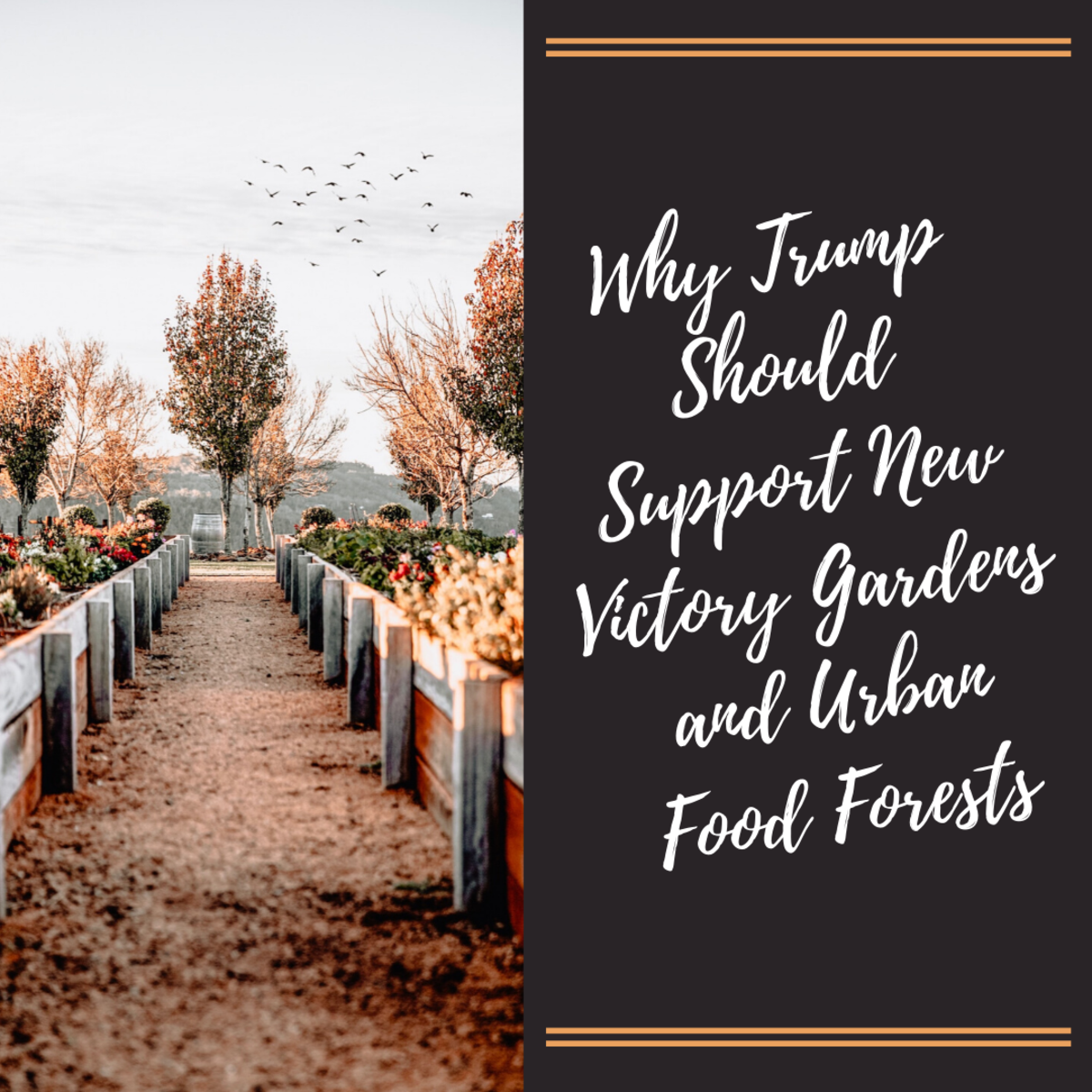 Due to a potential food crisis, President Trump should support efforts to promote and fund community gardens.