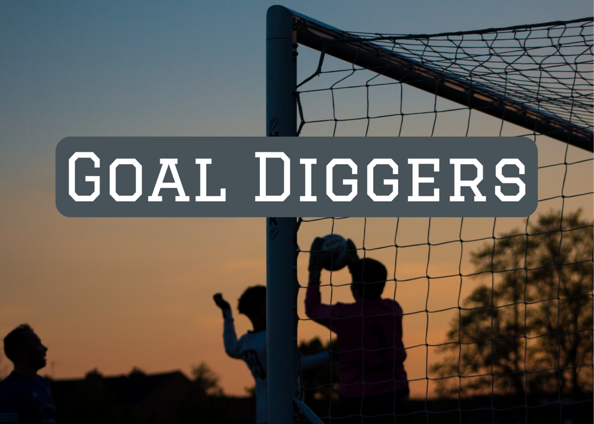 The Goal Diggers are a play on the GOLD diggers. This would be a great name for a team from a prospecting or mining town.