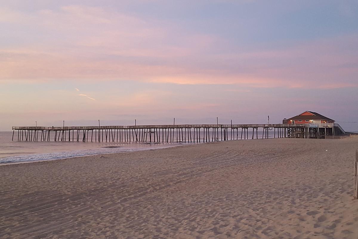 3 NEW 4/' Saltwater Surf Pier Bottom Fishing Rigs CHOOSE HOOKS Shark Drum Striper