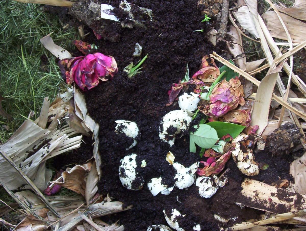 composting in the small garden dengarden