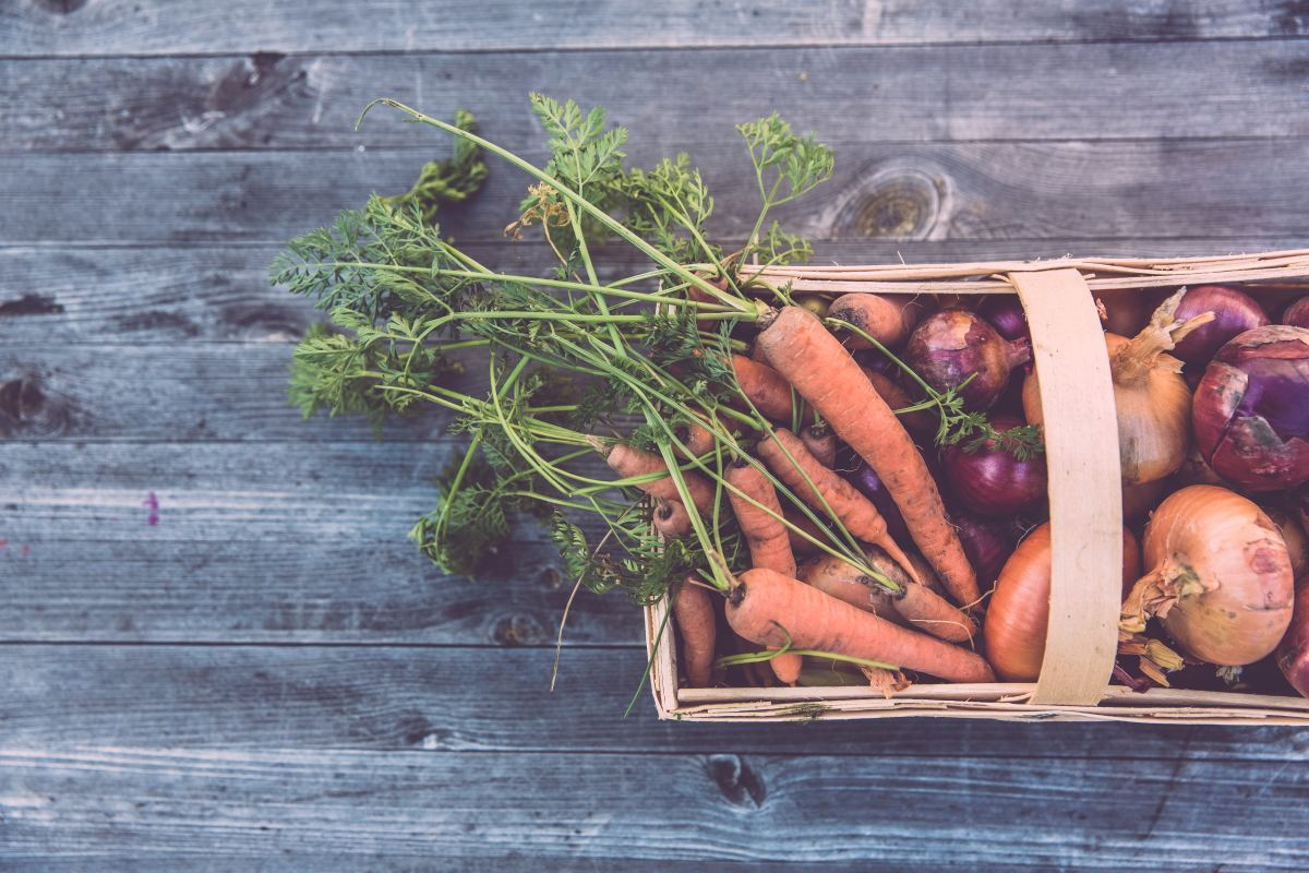 Companion Planting: Will It Benefit Your Garden?
