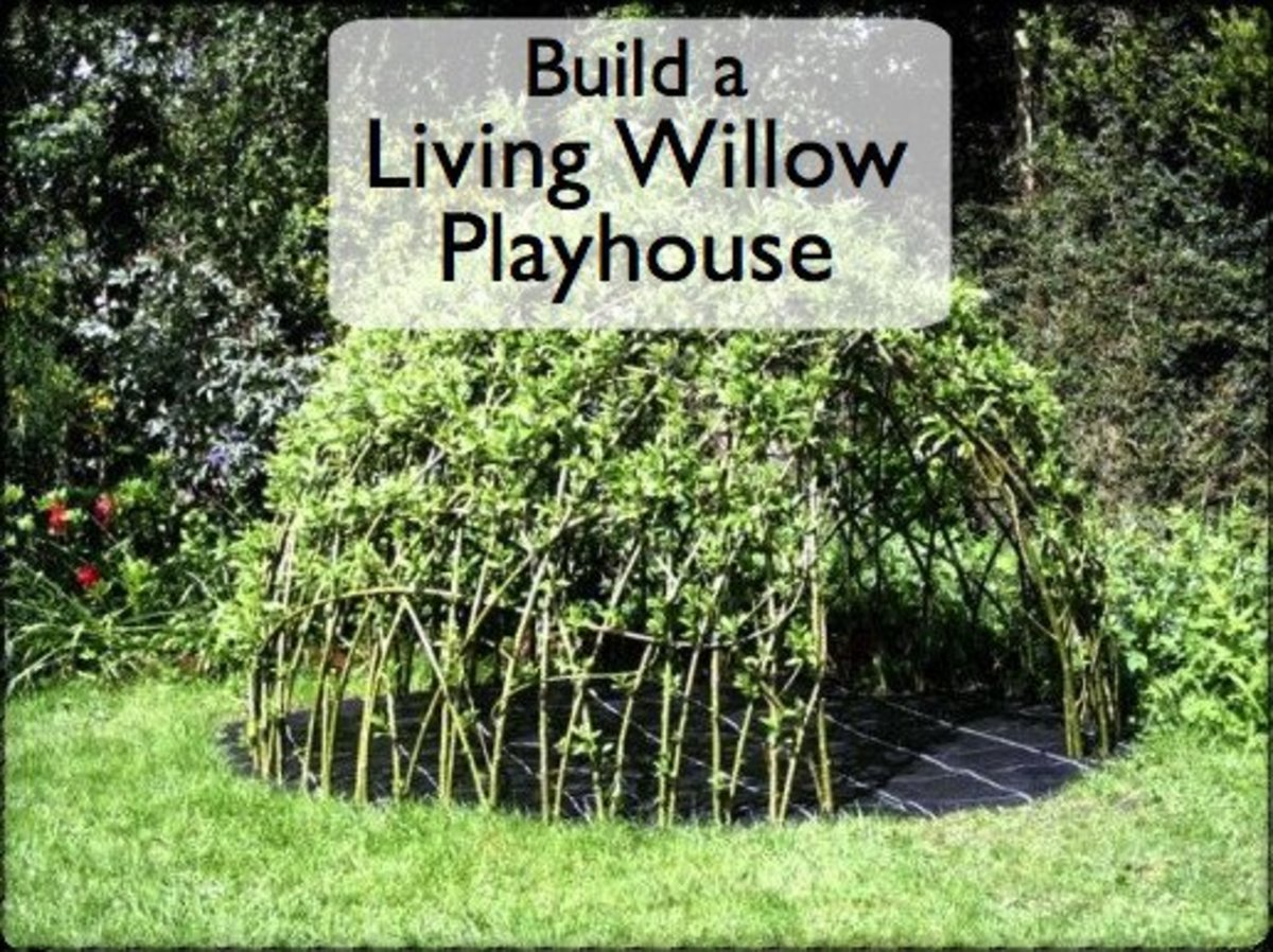 How to Grow a Child's Living Den or Playhouse From Willow or Bamboo