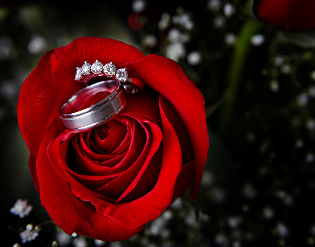 Advantages And Myths About Tungsten Carbide Wedding Bands Holidappy