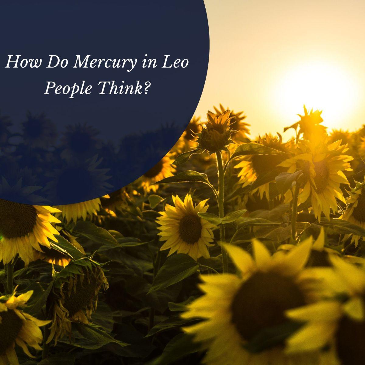 Mercury in Leo Thinkers