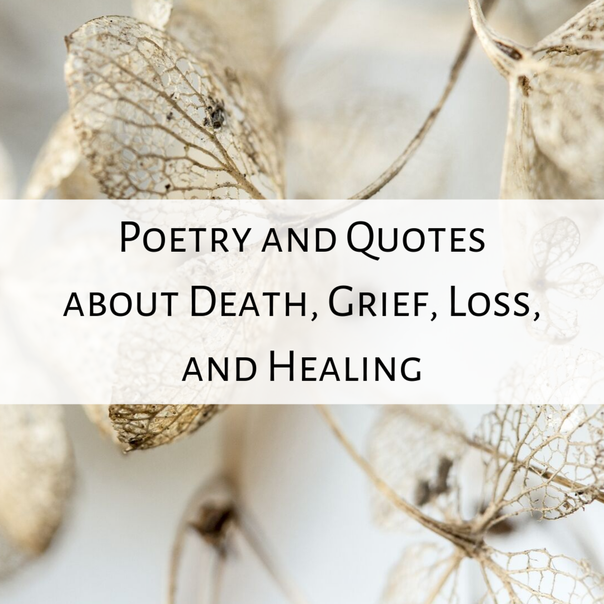 Read some comforting words for those that are left behind after a death or loss.