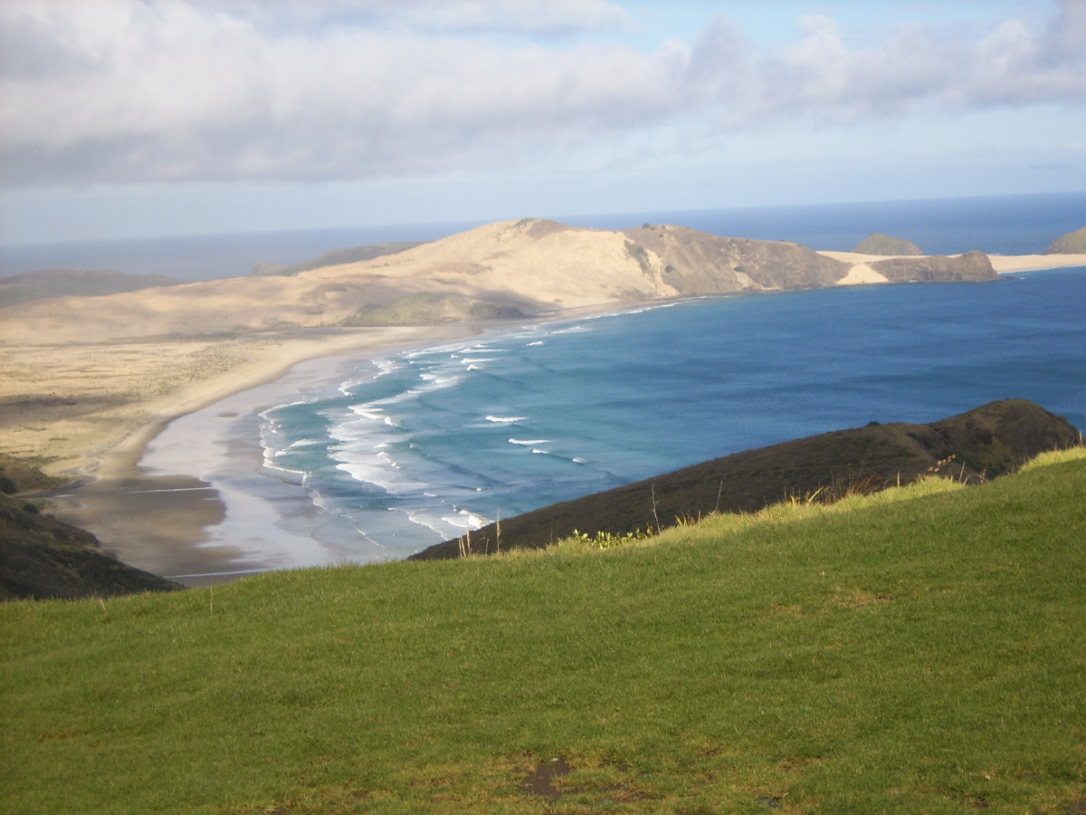 Things to Do in New Zealand in Winter - North Island