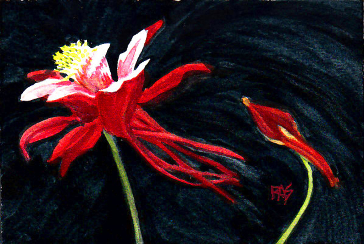 "Columbine, 4"" x 6"" watercolor on cold press watercolor paper by Robert A. Sloan. The finished painting for this step by step demonstration."