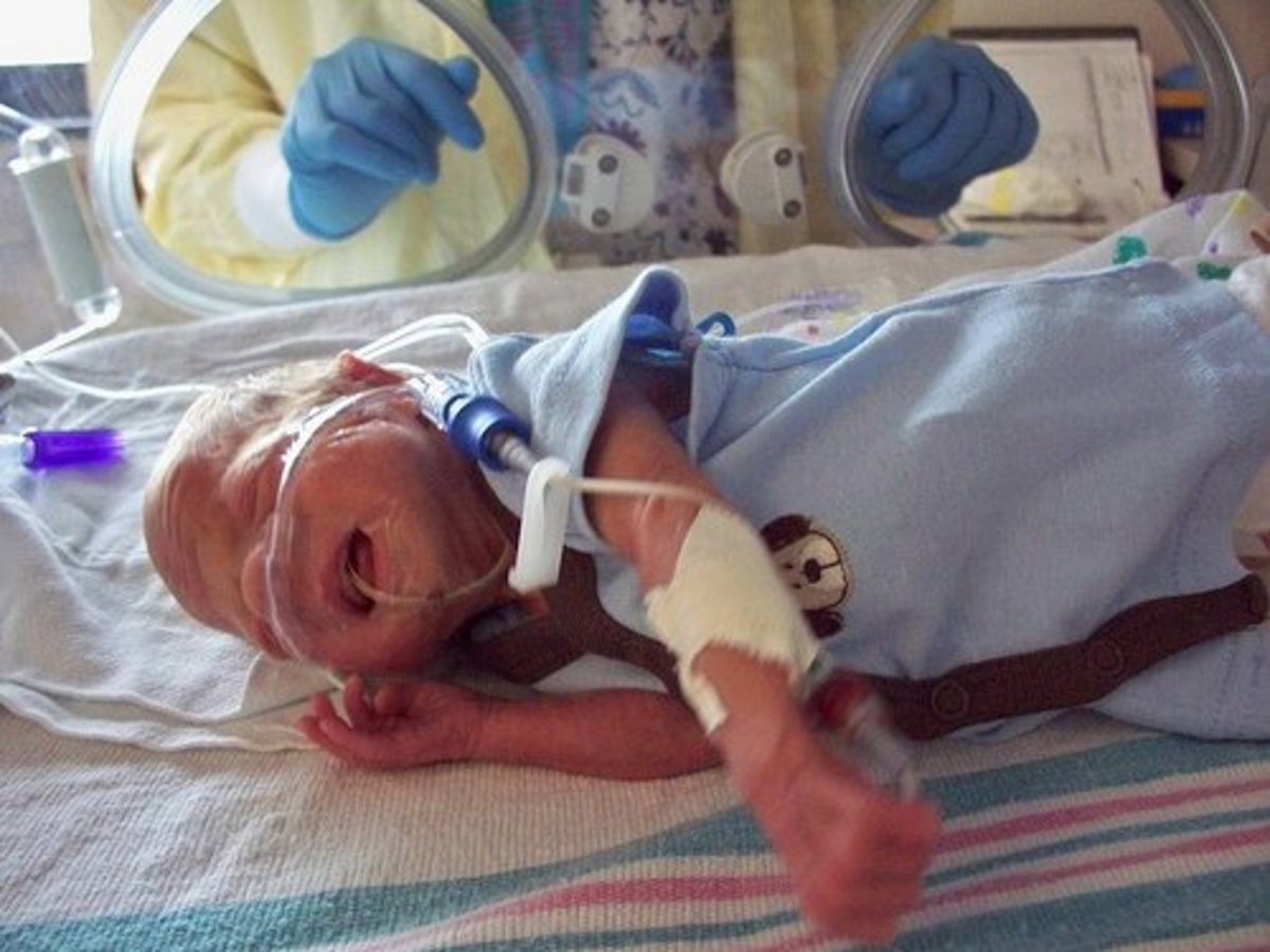 interacting-with-premature-infant-developmental-care-nicu