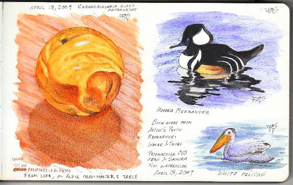Glass and Birds Page in my Moleskine watercolor journal by Robert A. Sloan