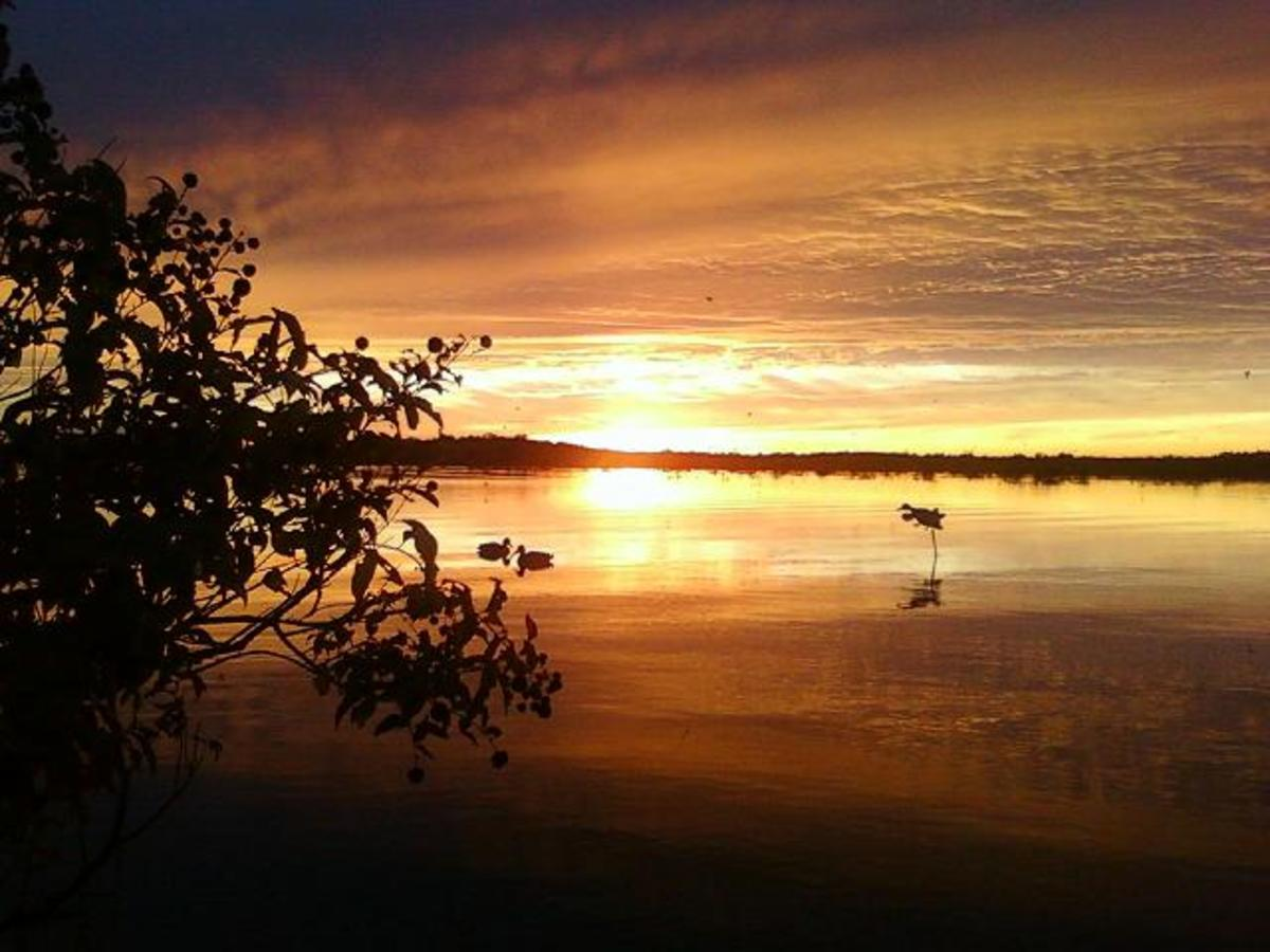 Duck Hunting Texas:  How to Use a Duck Call