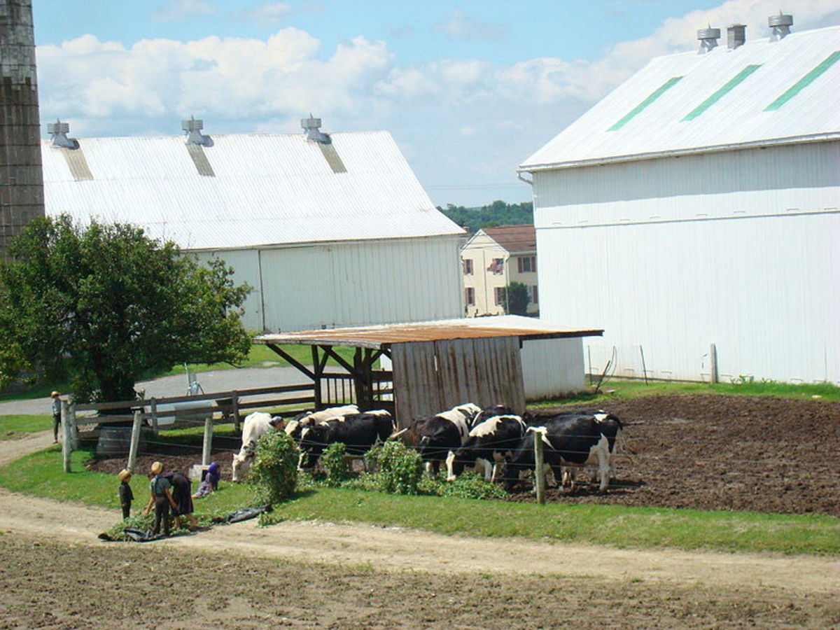 Top 5 best places to see in pennsylvania dutch country for Country farm simples